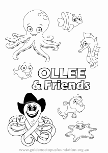 Ollee Colour In 02